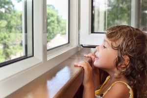 Advantages and Disadvantages of Aluminum Replacement Windows in Long Island